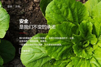 """从解决供给端入手,""""五百家"""" 想另辟蹊径,打造蔬菜反向供应链"""